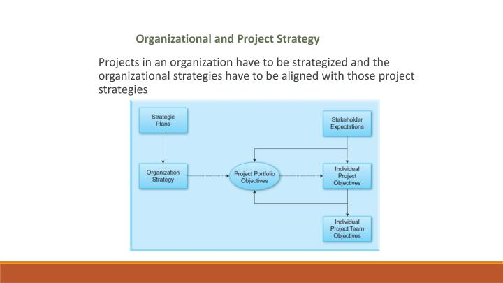 Organizational and Project Strategy