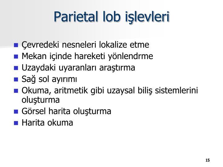 Parietal lob işlevleri