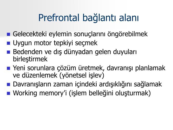 Prefrontal bağlantı alanı