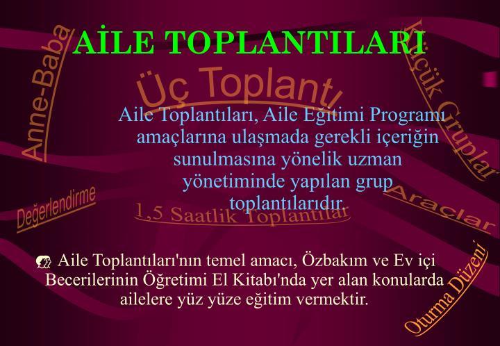 AİLE TOPLANTILARI