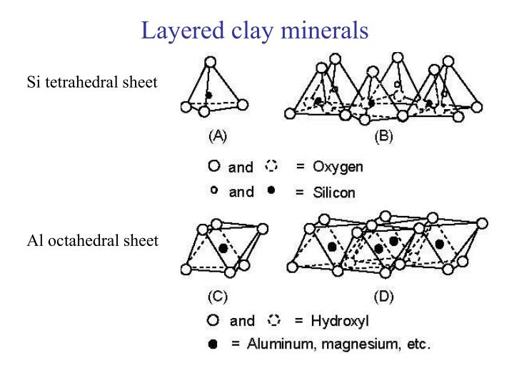 Layered clay minerals