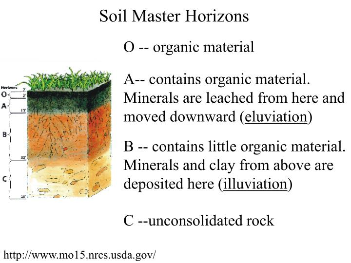 Soil Master Horizons