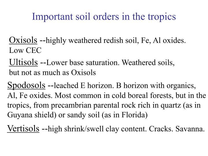 Important soil orders in the tropics