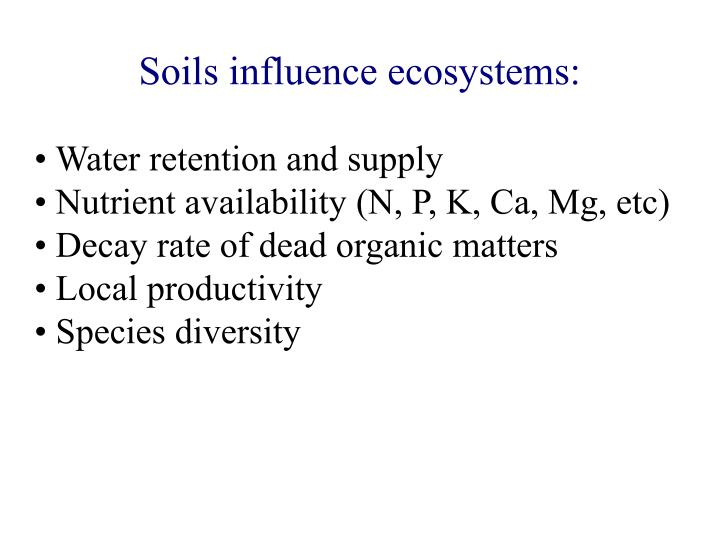 Soils influence ecosystems: