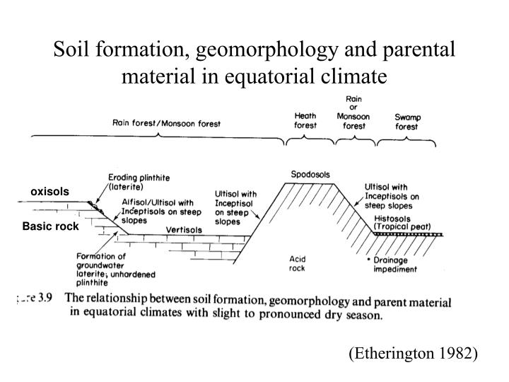Soil formation, geomorphology and parental material in equatorial climate