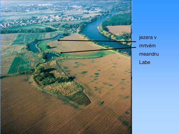 jezera v mrtvém meandru Labe