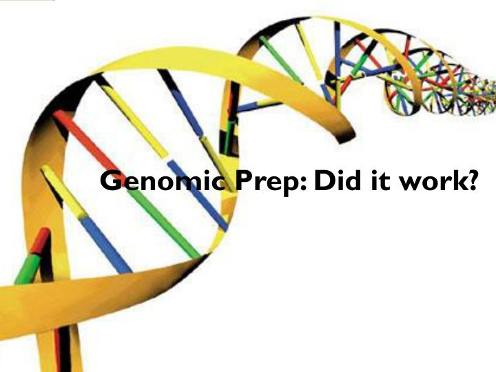 Genomic prep did it work