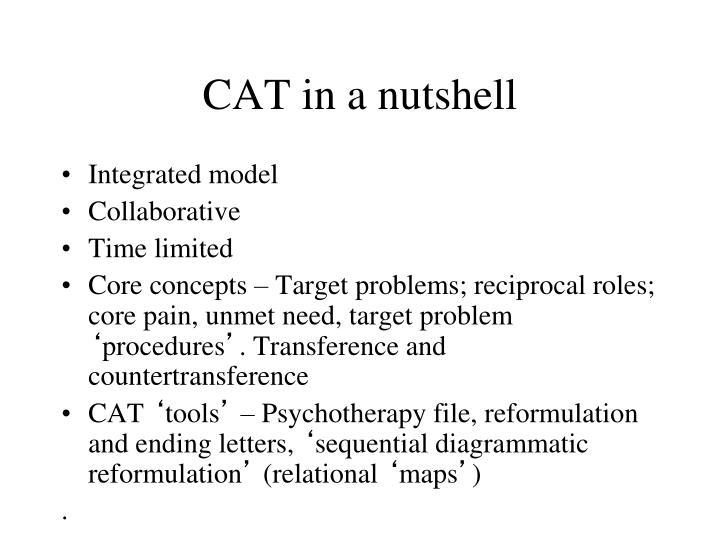 CAT in a nutshell