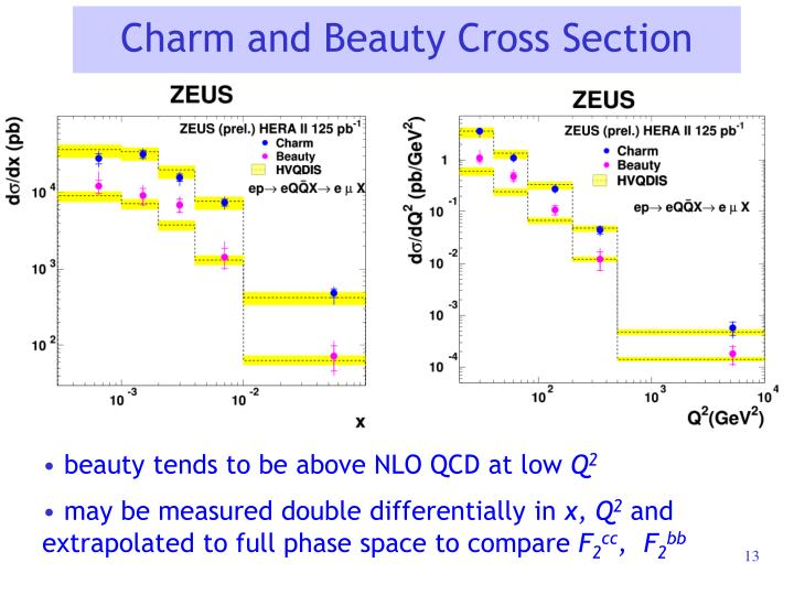 Charm and Beauty Cross Section