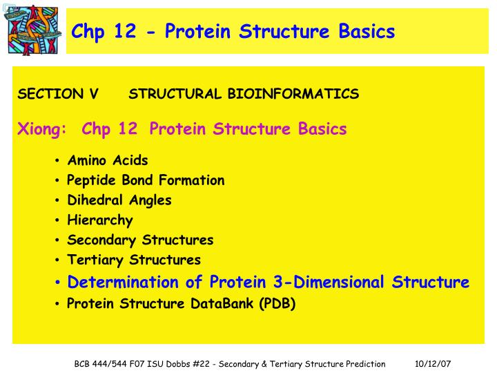 Chp 12 - Protein Structure Basics