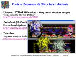 protein sequence structure analysis