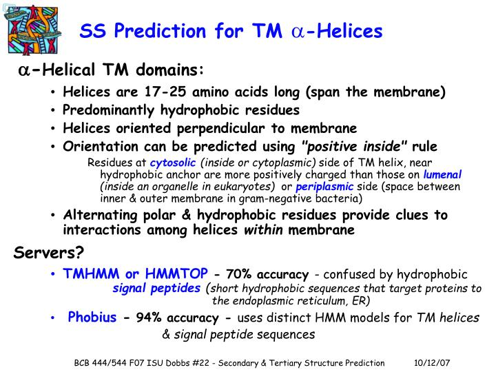 SS Prediction for TM