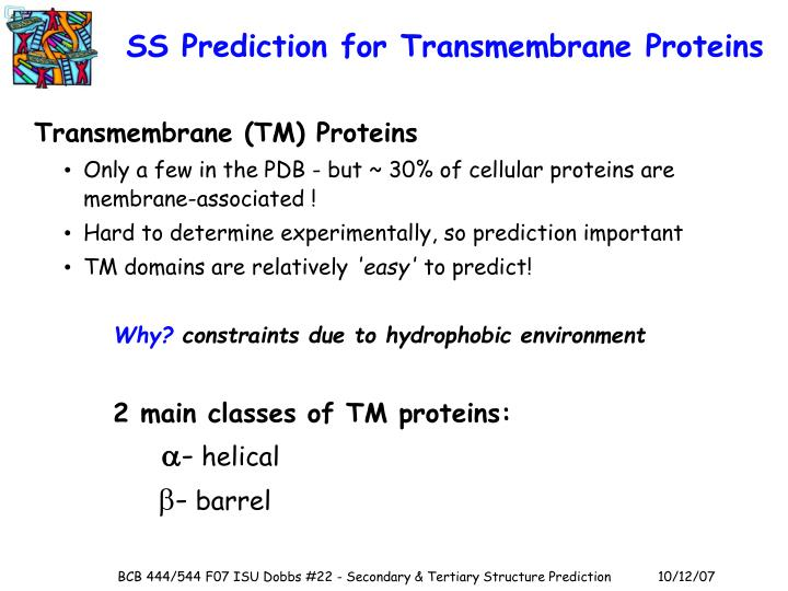 SS Prediction for Transmembrane Proteins