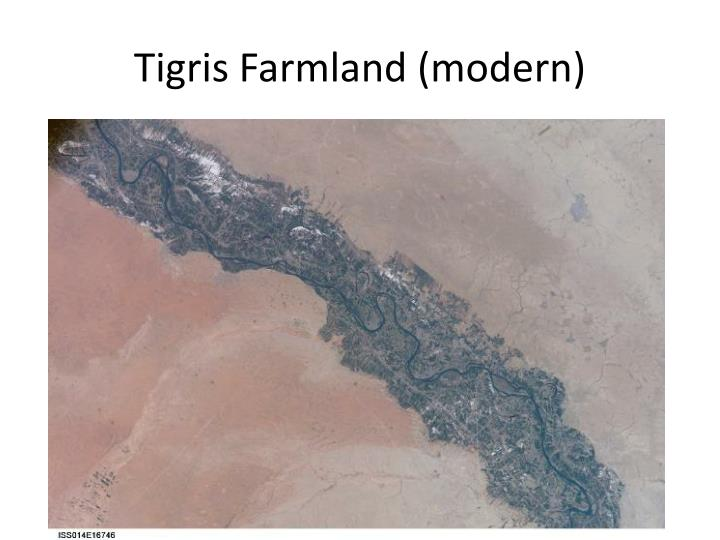 Tigris Farmland (modern)