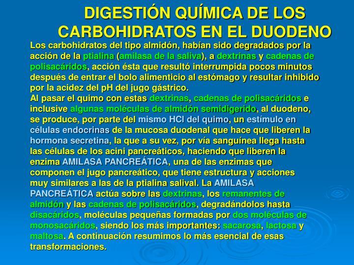 DIGESTIÓN QUÍMICA DE LOS CARBOHIDRATOS EN EL DUODENO