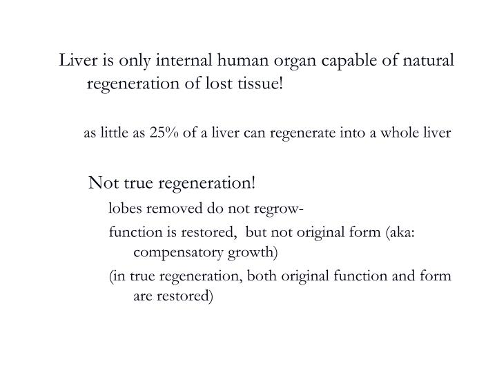 Liver is only internal human organ capable of natural regeneration of lost tissue!