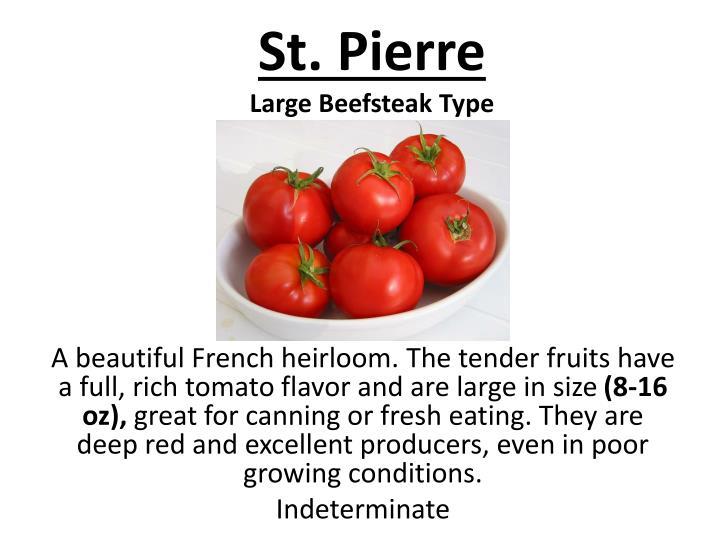 St. Pierre