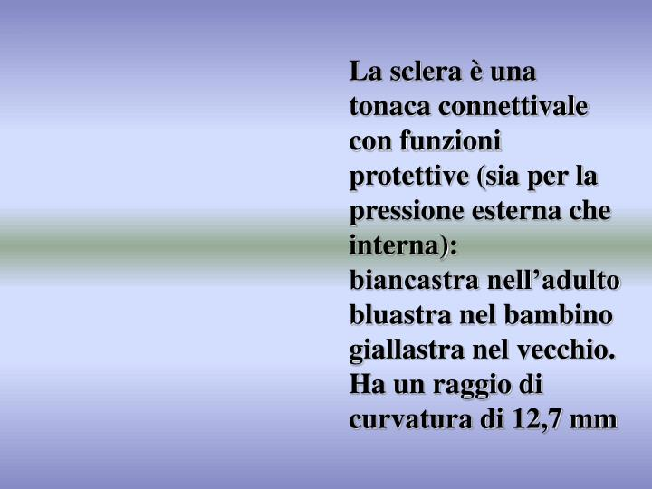 La sclera è una tonaca connettivale con funzioni protettive (sia per la pressione esterna che interna):