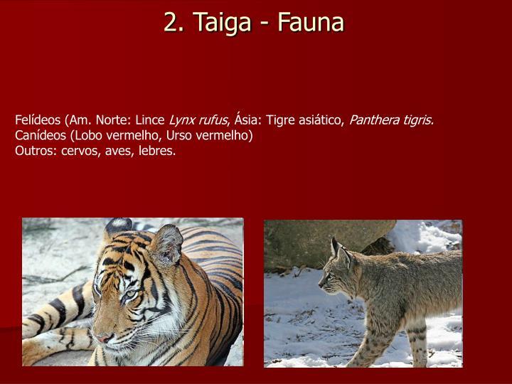 2. Taiga - Fauna