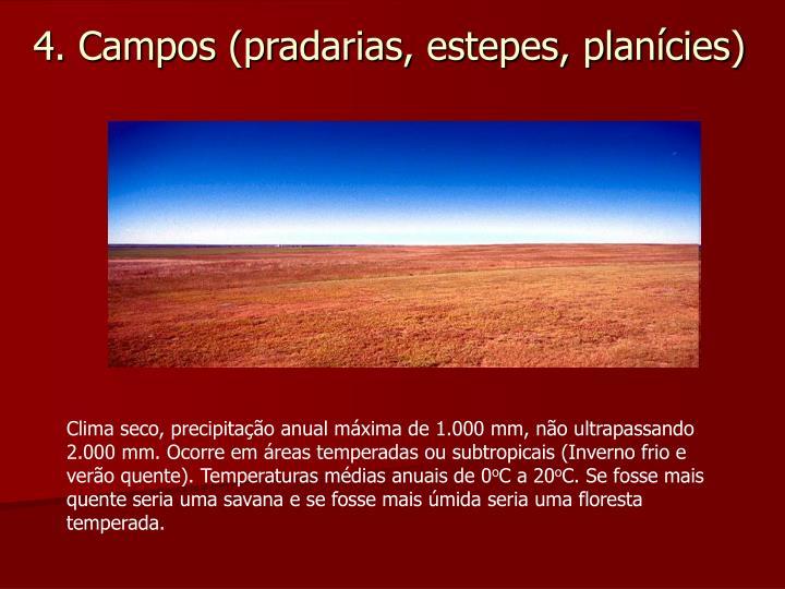 4. Campos (pradarias, estepes, planícies)