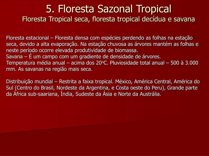 Floresta estacional – Floresta densa com espécies perdendo as folhas na estação seca, devido a alta evaporação. Na estação chuvosa as árvores mantém as folhas e neste período ocorre elevada produtividade de biomassa.