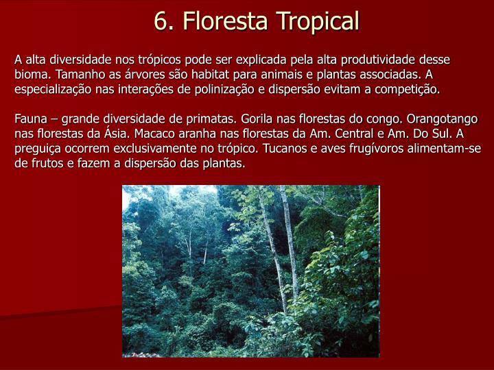 A alta diversidade nos trópicos pode ser explicada pela alta produtividade desse bioma. Tamanho as árvores são habitat para animais e plantas associadas. A especialização nas interações de polinização e dispersão evitam a competição.
