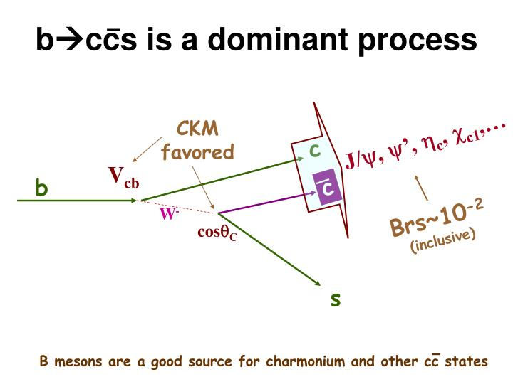 B ccs is a dominant process