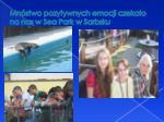 mn stwo pozytywnych emocji czeka o na nas w sea park w sarbsku