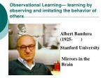 observational learning learning by observing and imitating the behavior of others