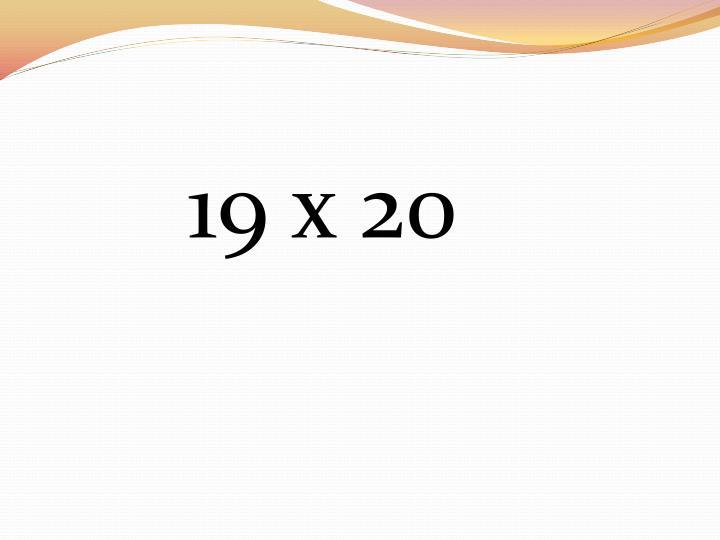 19 x 20