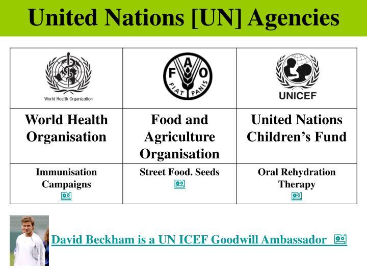 United Nations [UN] Agencies