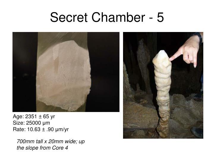 Secret Chamber - 5