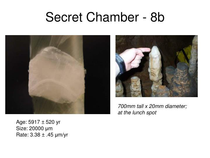 Secret Chamber - 8b