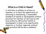 what is a child in need