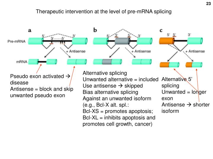 Therapeutic intervention at the level of pre-mRNA splicing