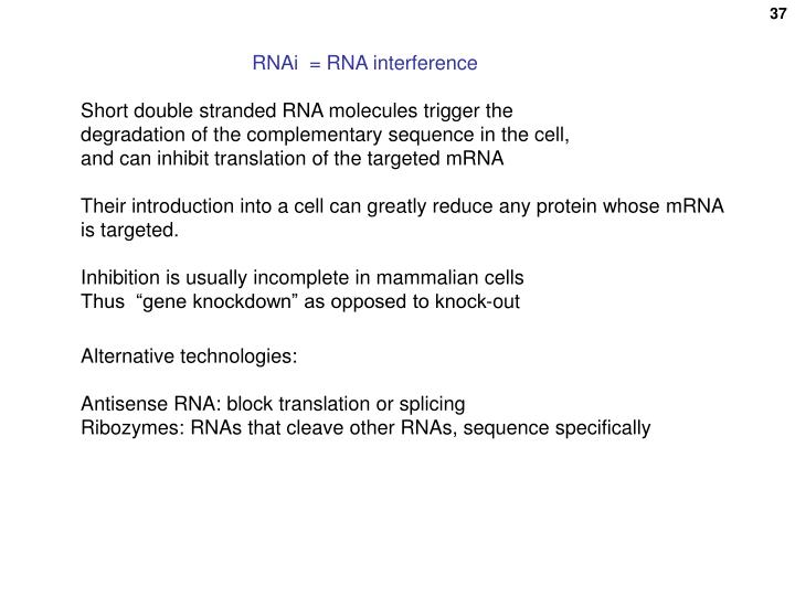 RNAi  = RNA interference