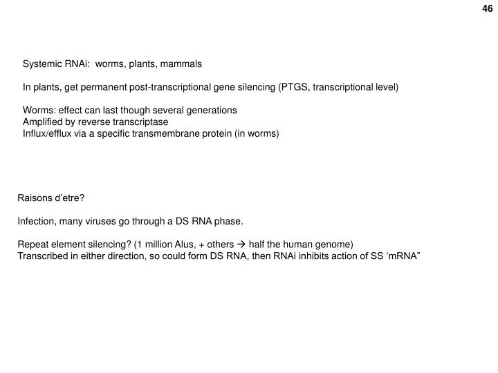 Systemic RNAi:  worms, plants, mammals