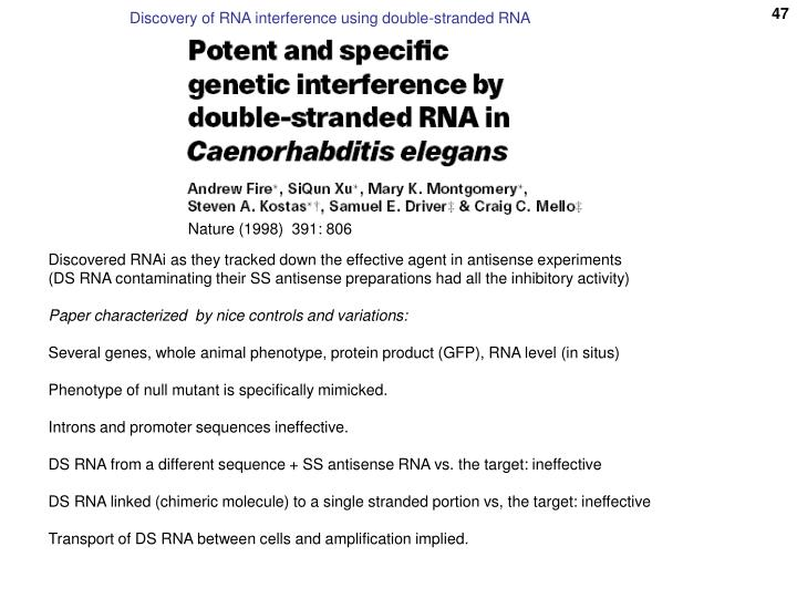 Discovery of RNA interference using double-stranded RNA