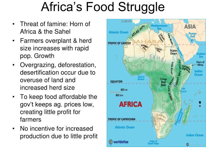 Africa's Food Struggle