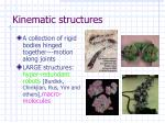 kinematic structures