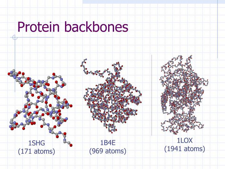Protein backbones