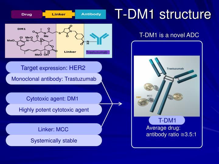 T-DM1 structure
