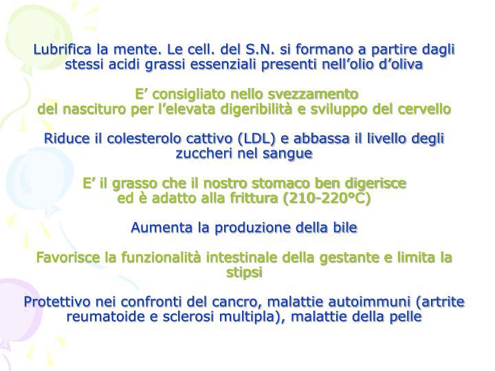 Lubrifica la mente. Le cell. del S.N. si formano a partire dagli stessi acidi grassi essenziali presenti nell'olio d'oliva