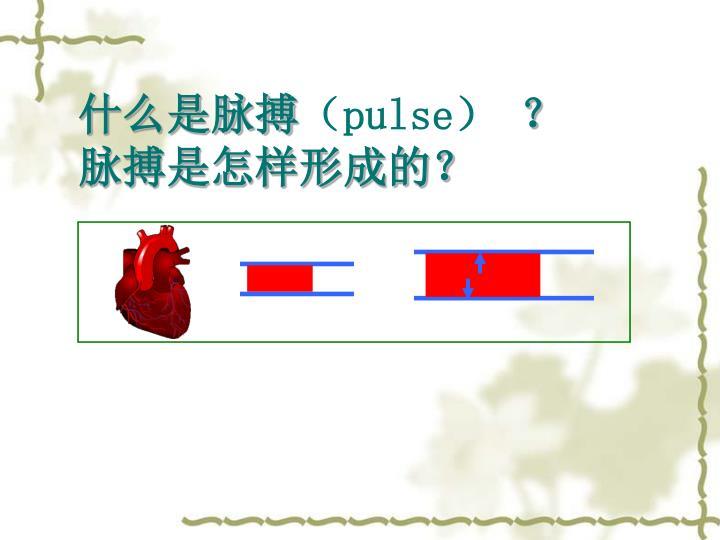什么是脉搏