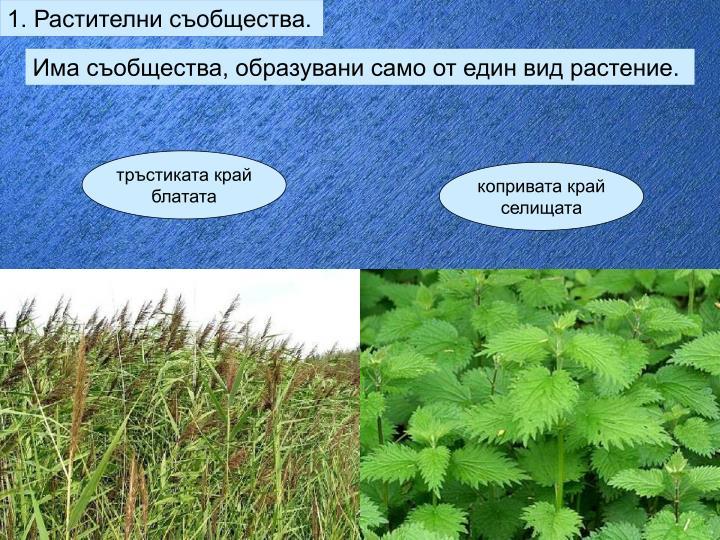1. Растителни съобщества.