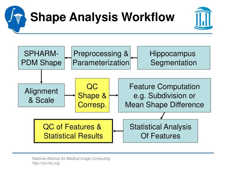 Shape analysis workflow