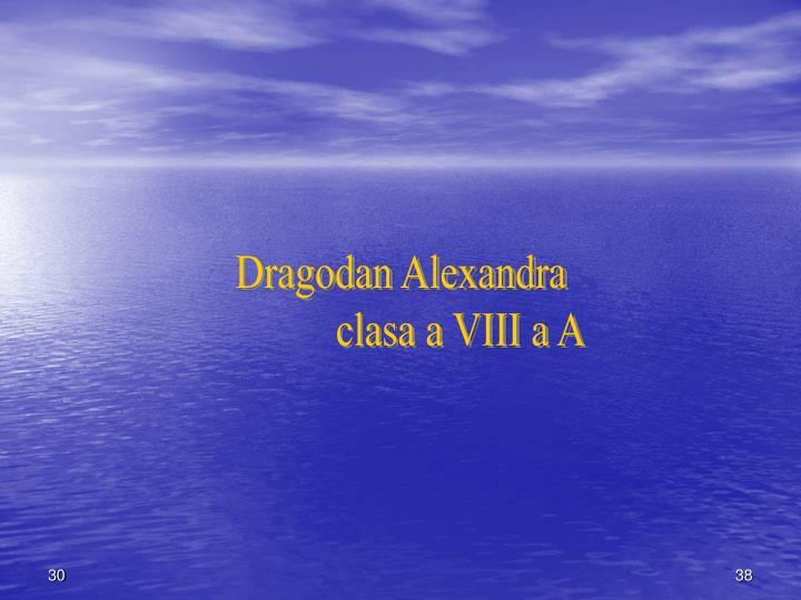 Dragodan Alexandra