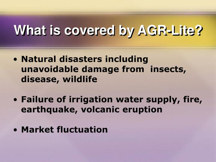 What is covered by AGR-Lite?