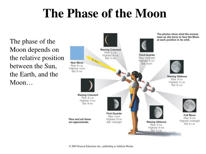 The Phase of the Moon