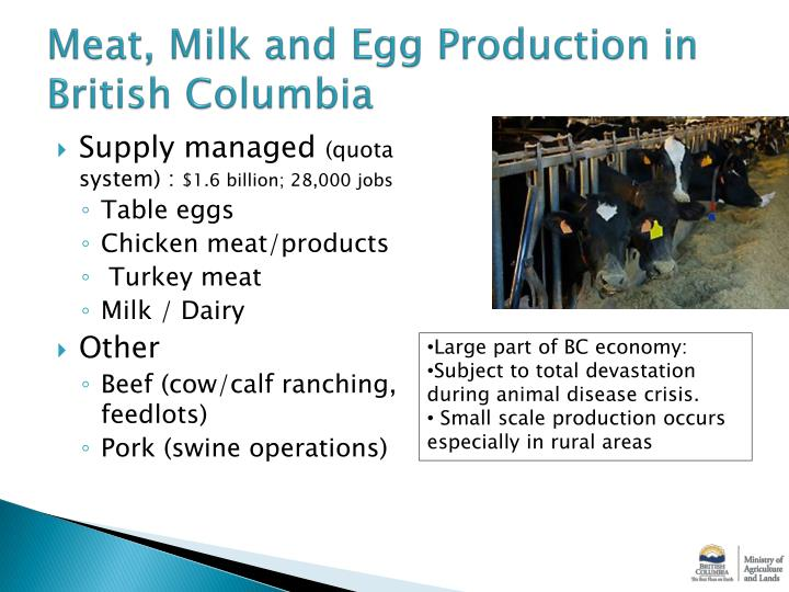 Meat milk and egg production in british columbia